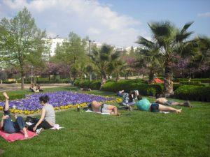Süsses Nichtstun im Parque Garcia Lorca
